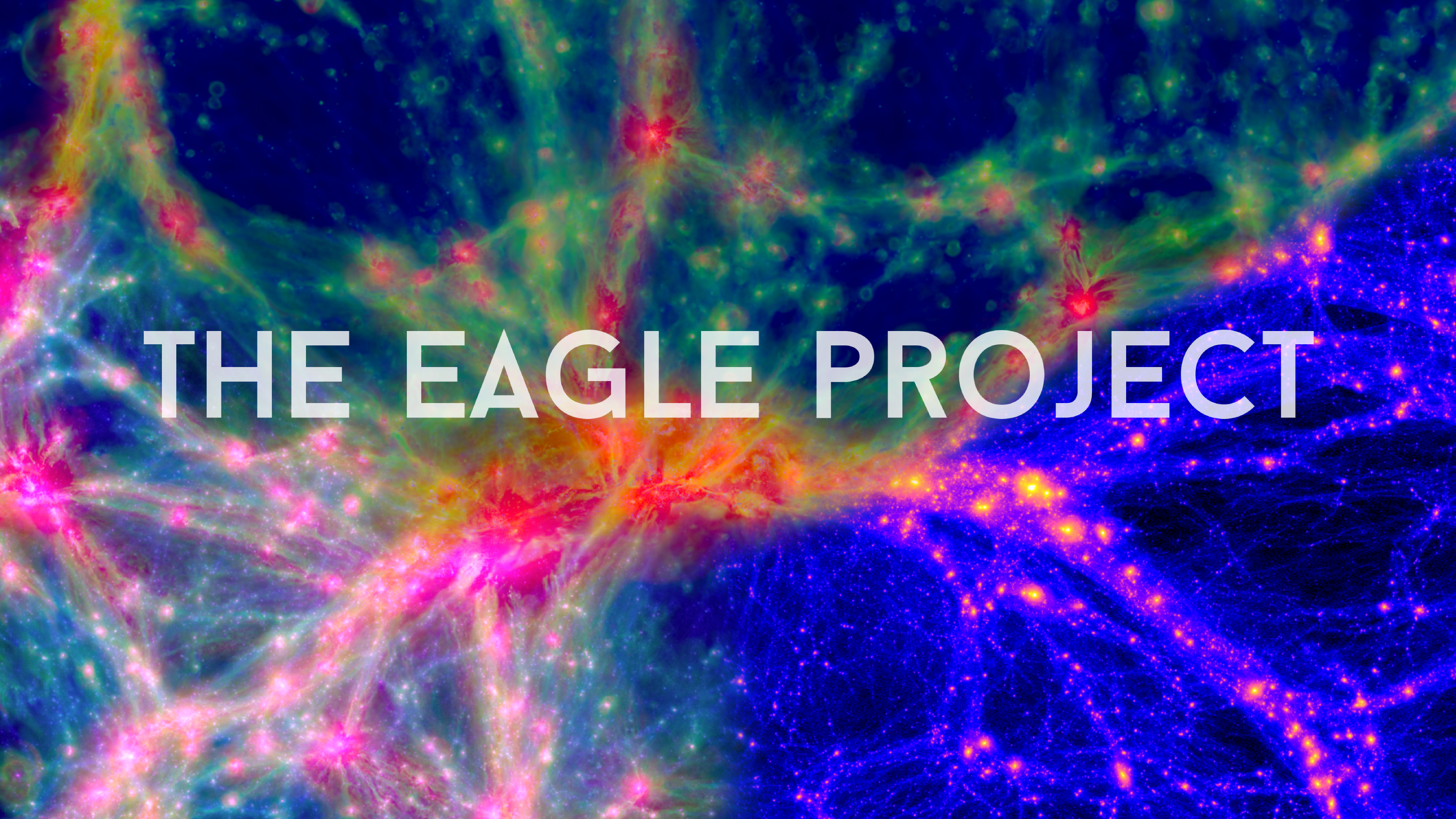 The EAGLE Project